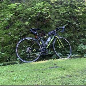 塩ノ沢峠旧道を南牧村→上野村で走ってきました。あと最近のサプリマイブーム報告