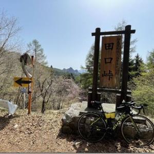 群馬-長野間のマイナー峠・田口峠を攻略するGWライド ダイドーさんに感謝の170km2200mUP