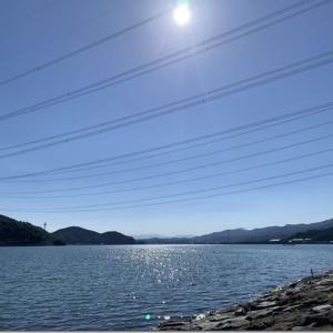 実家に行っていました。福井県の高浜町の海岸や漁港を早朝と夕方に歩いていました。