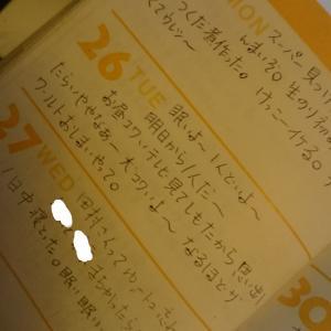 新聞少女物語~配達に同行
