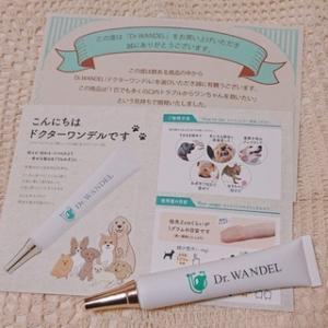 犬の歯周病ケア【ドクターワンデル】ってどうなの…?