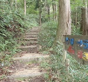 林道を歩いて荒神山584