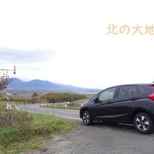 【北海道旅行】カロリーもお財布も気にせず食べる旅。