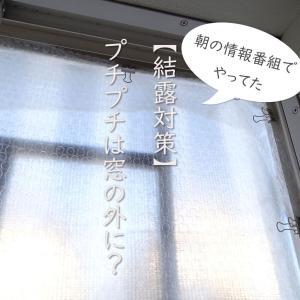 【あさイチの結露対策】プチプチは窓の外に・・?