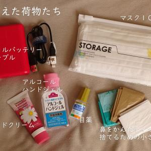 送料込み840円のバッグインバッグを買ってみた。