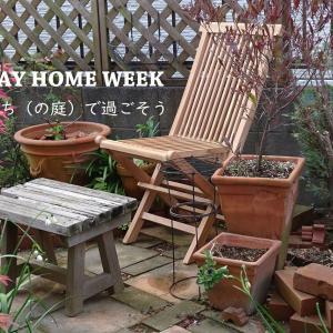 GW(SHW?)は、うち(の庭)で過ごそう│木製ガーデンチェアを買う。