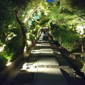 【京都】高台寺夜間特別拝観