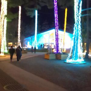 【長野】国営アルプスあづみの公園