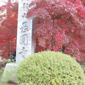 【長野】お殿様が愛した諏訪紅葉三山巡り  ~長円寺~