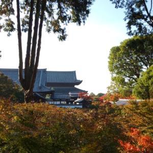 【京都】11月二回目の京都旅  ~東福寺②~