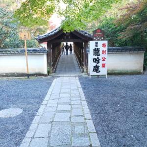 【京都】11月二回目の京都旅  ~東福寺塔頭龍吟庵~