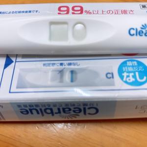 6/17 子だくさん母 妊娠検査薬で妊娠検査 その結果は???