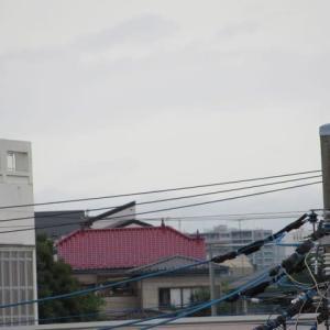埼玉県は穏やかです、九州地方の皆様に申し訳ないな。