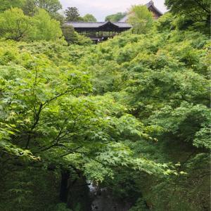 はんなり京都旅行3