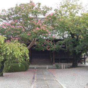 第9回 お寺で自己指圧Café in 大阪 ご報告