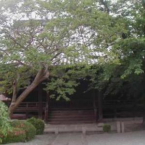 ご報告 お寺で自己指圧Café in 大阪 番外編