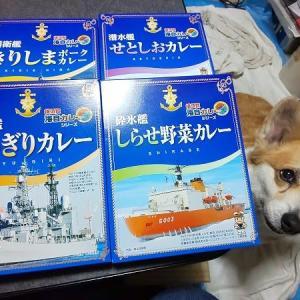 海軍カレーいただきました!