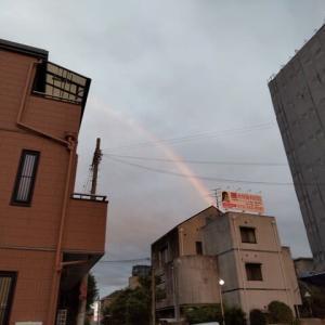 虹が出ました~