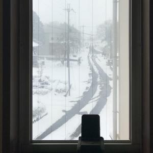 初雪( ̄▽ ̄;)