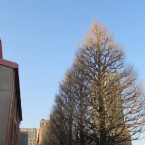 白金高輪駅から白金台駅へ ⑥ 古地老稲荷神社