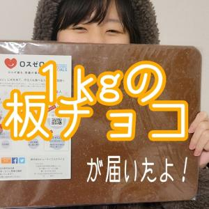 1kgの板チョコ、どうやって食べる?