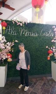 アラモアナの旧正月インスタスポットと白木屋の演歌歌手