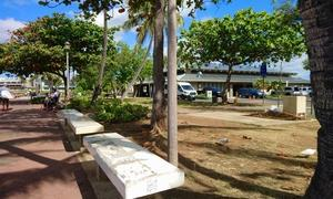 ハワイ ケワロベーシンハーバーパーク