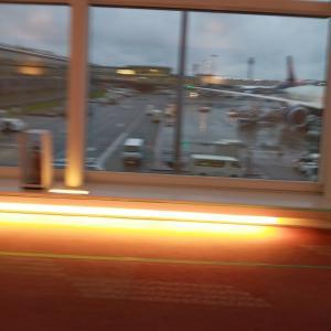 雨の羽田空港