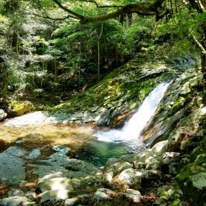 成川渓谷とコロナ苦