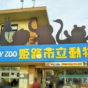 【レポ】姫路市立動物園行ってきたよ~子連れにぴったりのゆるふわ動物園~