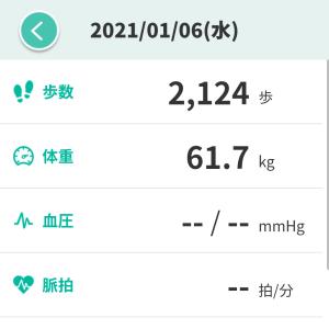 【ダイエット】運動が出来なかったから食事でつじつま合わせた31日目