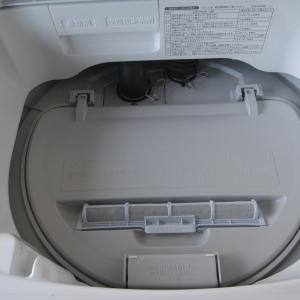 洗濯機のホコリ…そしていただきもの♪