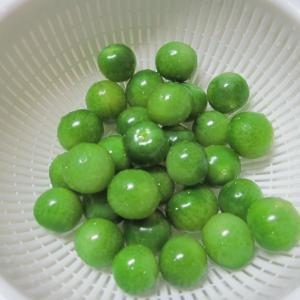 【函館】初家庭菜園…青ミニトマトをピクルスにする