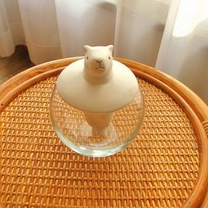 【函館】白熊みたいなカピバラ…