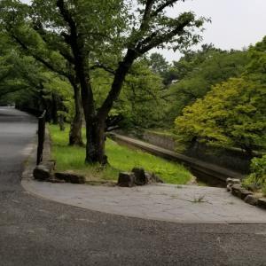 夙川公園へサイクリング♀️