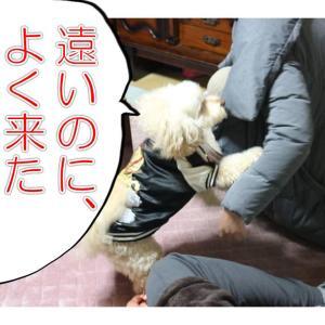 2019年を振り返る(前編)!の巻