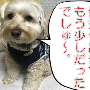 サラリーマン川柳、優秀作品発表!の巻