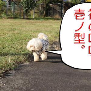 福の呼吸・壱ノ型!の巻