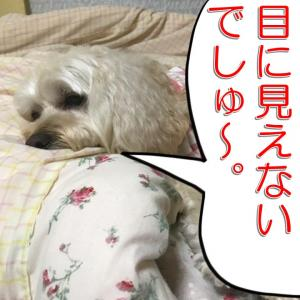 COPIC AWARD2021 進捗!の巻