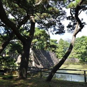 皇居東御苑 二の丸雑木林を散策 2