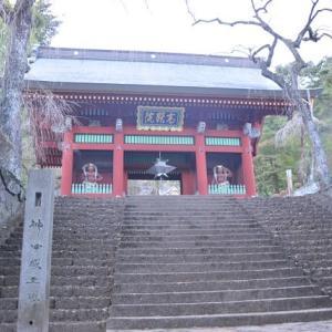 妙義神社の御殿(宝物殿)から長い階段 2