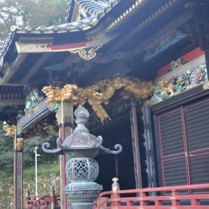 妙義神社は黒漆塗権現造りの荘厳な建物 4