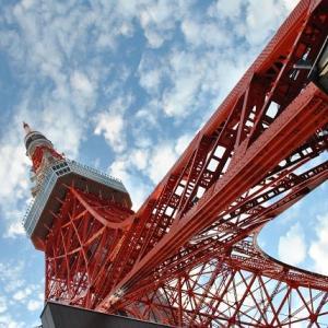 東京タワーとプリンスホテルの景色 6