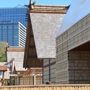 皇居東御苑の大嘗宮の左側面を見て竹林と紅葉を見ます 8