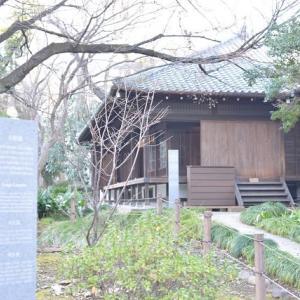 上野国立博物館裏の日本庭園 5