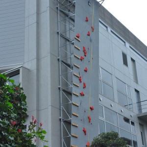 朝の散歩で会った 立教大学の外壁ボルダリング 2-2