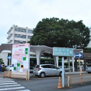 日大病院から散歩 大谷口の氷川神社に行きます 3-8
