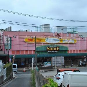 氷川神社から散歩してダイソーよしや大谷口に  3-9