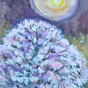 しだれ桜と月光 絵 2-77
