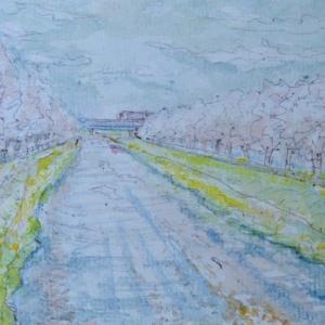 桜並木と黒目川土手  絵   57